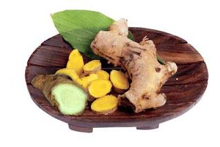 Obat-Obatan Herbal Untuk Burung Kenari Dari Sayur, Tumbuhan, Daun dll. Yang Lebih Efektif Daripada Obat Kimia
