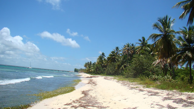 Karaiby plaża