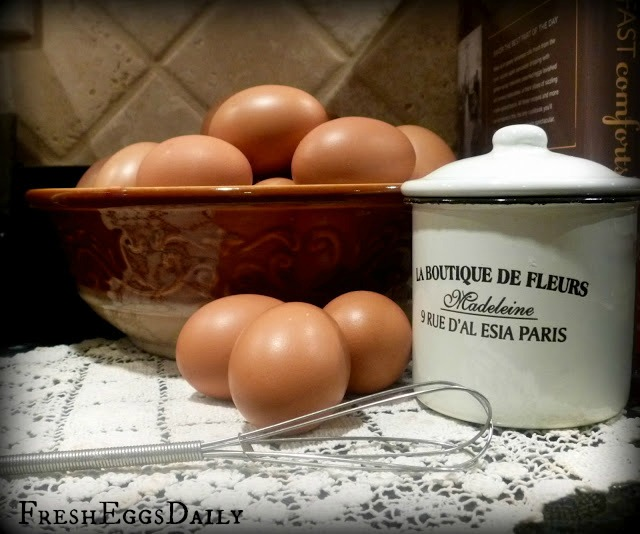Black Copper Marans Eggs