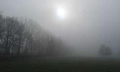 Brouillard en Auvergne