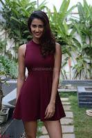 30 Best Pics of Disha Patani Tiger Shroff Girlfriend  Exclusive Galleries 014.jpg