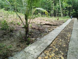Tanah Dijual Butuh Uang Kulonprogo di Karangsari Dekat Bandara Jogja