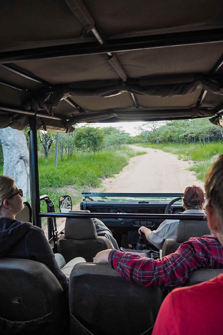Sitting in a safari vehicle