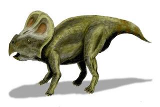 Dinozor Albertaceratops'un Özellikleri
