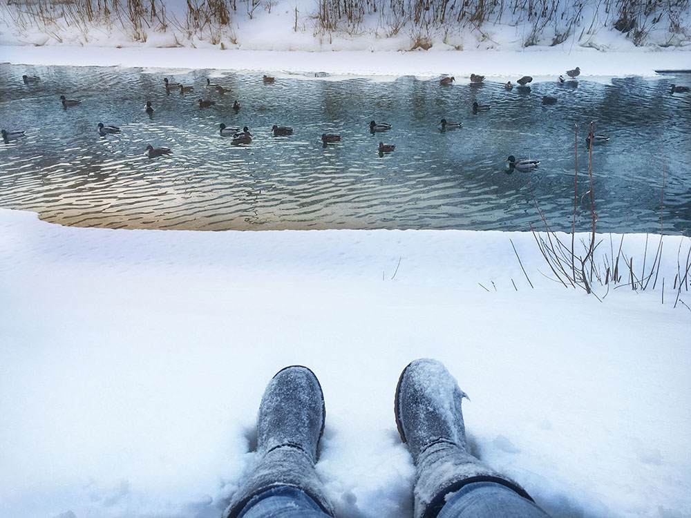 Things to do in Tomsk Siberia