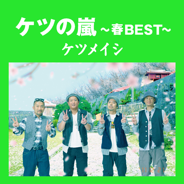Boom Boom Satellites - Experienced II: Embrace Tour 2013 Budokan - Documentary Edition
