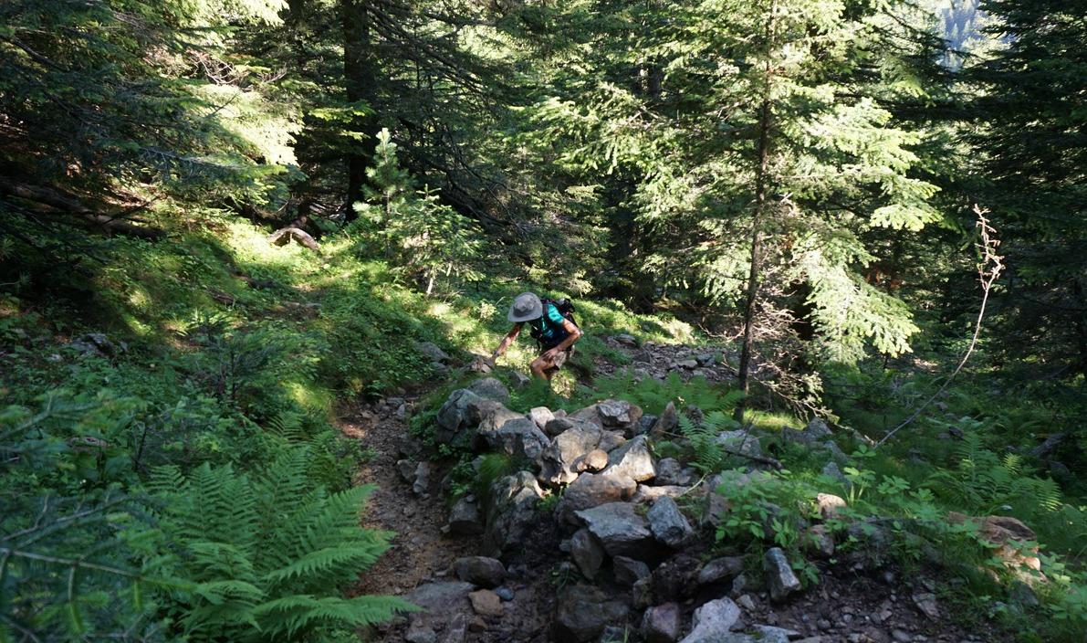 Climbing in Foret du Boréon