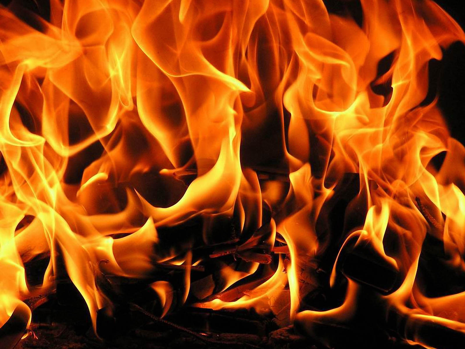 Eight Rolls Of Four Free Fire Wallpaper: Wallpapers: Fire Flames