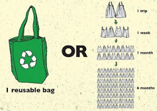 Graphic displaying 1 re-usable bag being equal to 2 plastic bags per trip, 4 per week, 16 per month, or 96 in 6 months