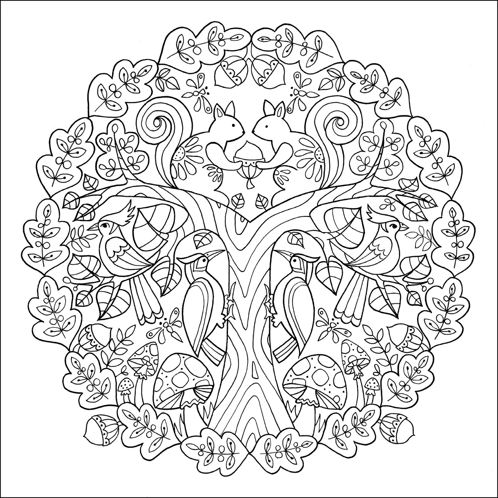 Lighthouse-Academy: Wonders of Creation Coloring Book