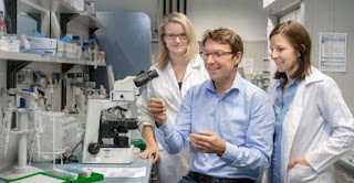 Scientists Come To Discover The True Cause Of Colon Cancer