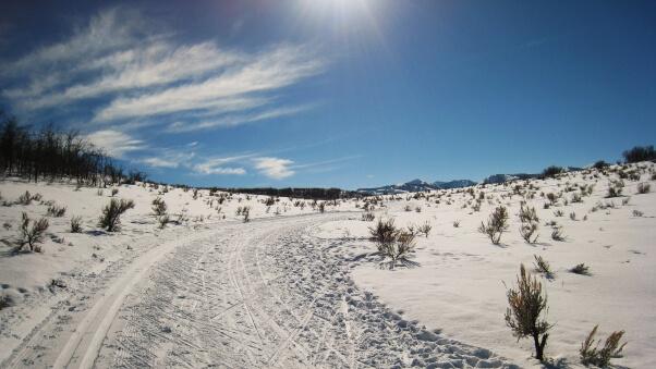 Desktop HD Wallpaper Winter Snow Road Trees Sky Summer
