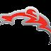 Jadwal & Info MotoGP Australia 2017