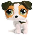 Littlest Pet Shop Pet Pairs Jack Russell (#804) Pet