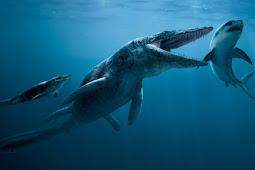 12 Fakta Mengerikan tentang Hiu Megalodon
