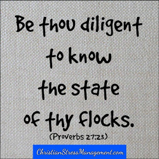 Be thou diligent to know the state of thy flocks Proverbs 27:23