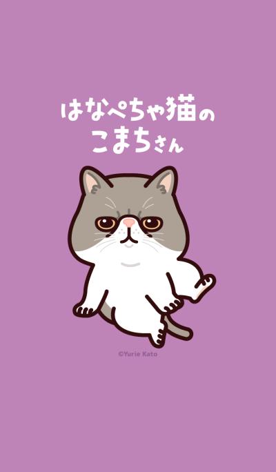 Ms. Komachi of flat nose cat