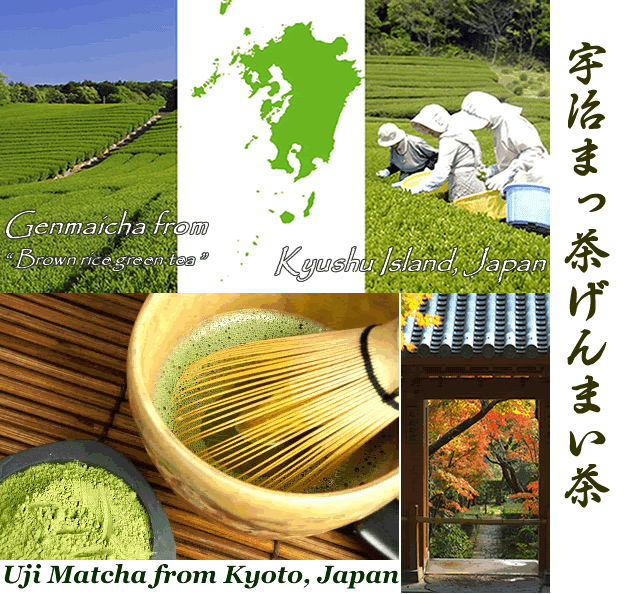 Uji matcha blend Genmaicha brown rice green tea premium uji Matcha green tea powder aojiru young barley leaves green grass powder japan benefits wheatgrass yomogi mugwort herb