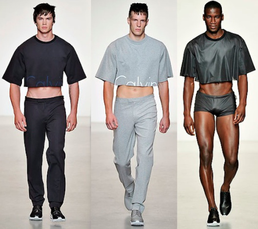 Cropped Masculino Será Que Essa Moda Pega Portal Absurdo