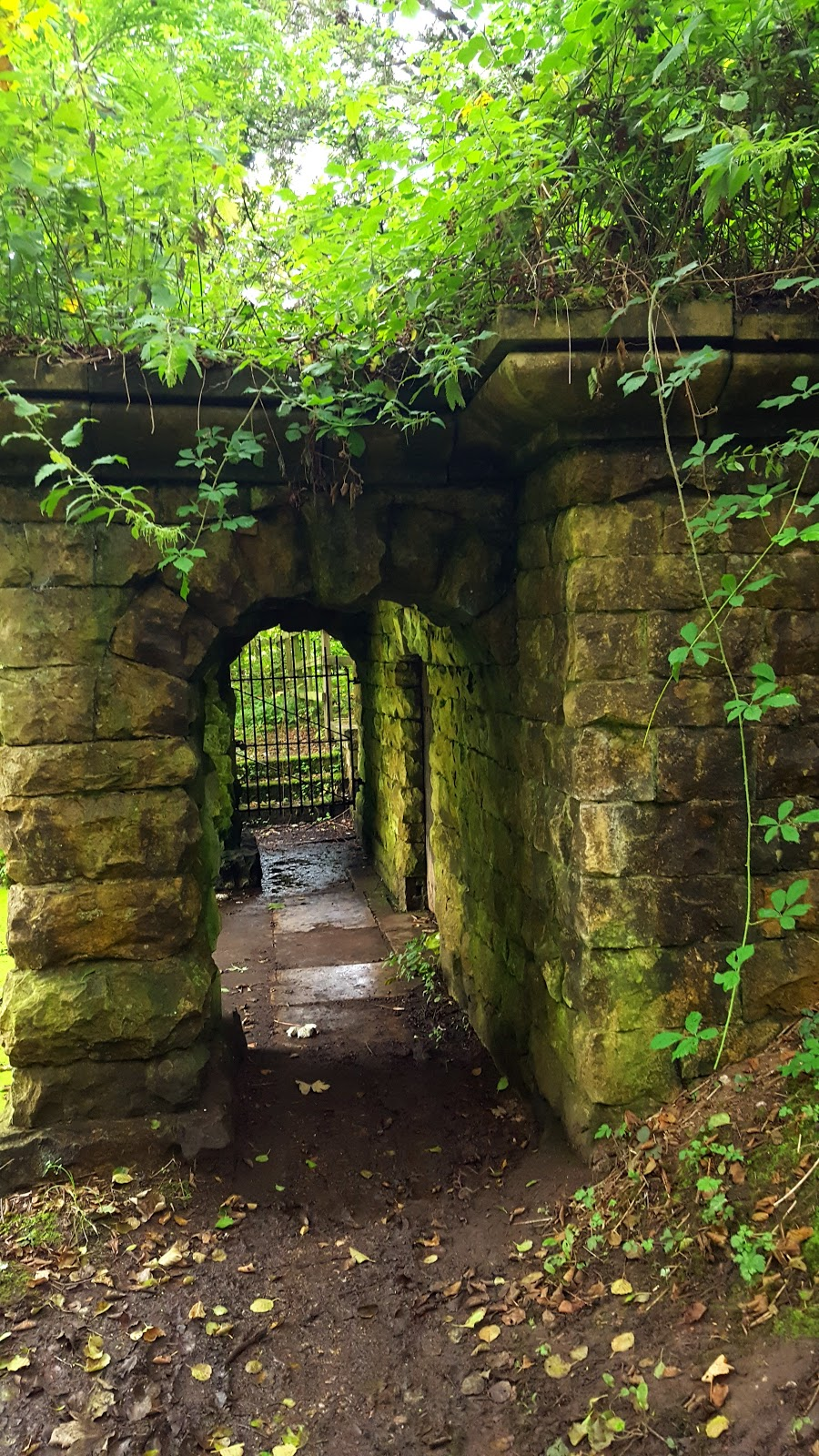 A Family Day Out In Clumber Park, Nottinghamshire