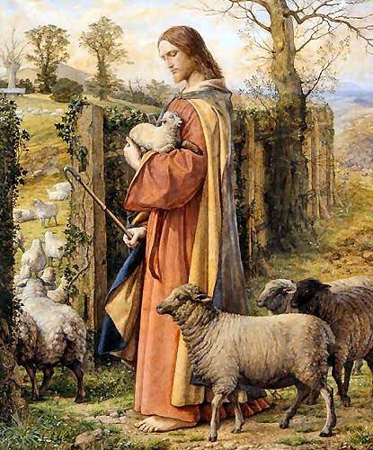 "Sermon Feed My Sheep: ""Like Sheep Without A Shepherd"""