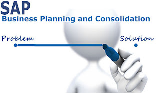 SAP Business Planning and Consolidation ebook
