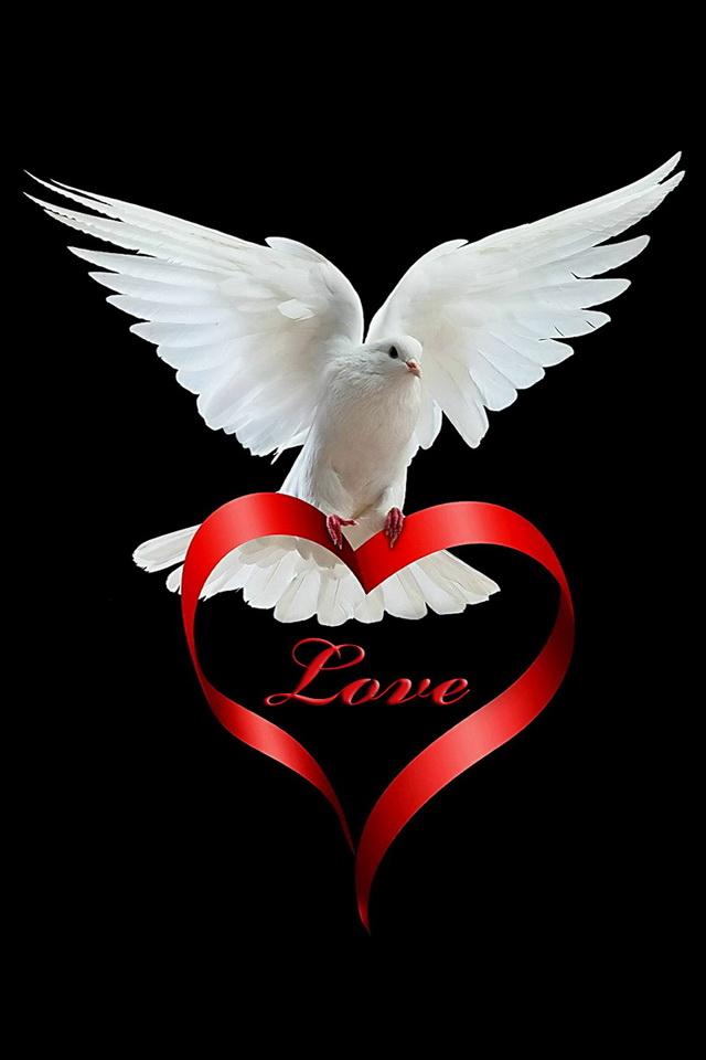 hinh love