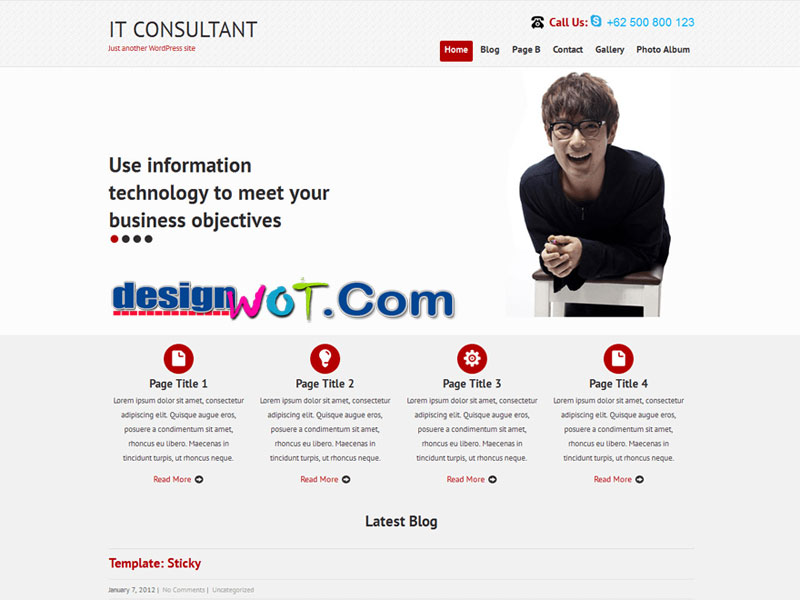 SKT IT Consultant