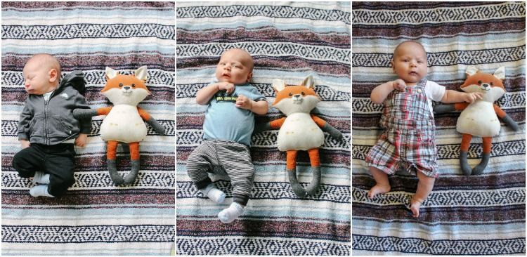 A great way to watch your little one grow month by month.  Compare him (or her) to a favorite stuffed animal!