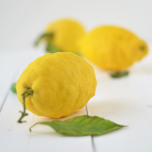 Zitroneneis mit Basilikum Rezept Zitroneneis selbermachen