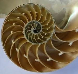 Barisan atau Bilangan Fibonacci