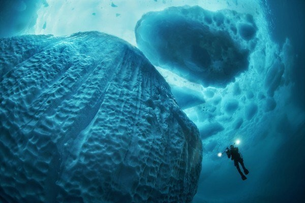 The Best Underwater Photos EVER Taken Show Life From A Different Angle. - 'Icebreaker' by Tobias Friedrich (Deutschland)