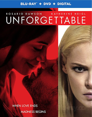 Unforgettable 2017 Eng BRRip 480p 300mb ESub