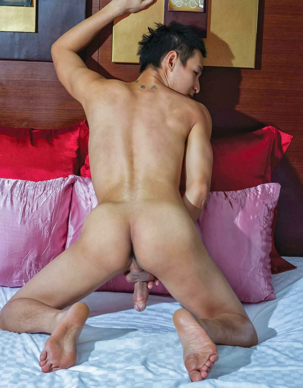 gay trick or treat bareback gay videos