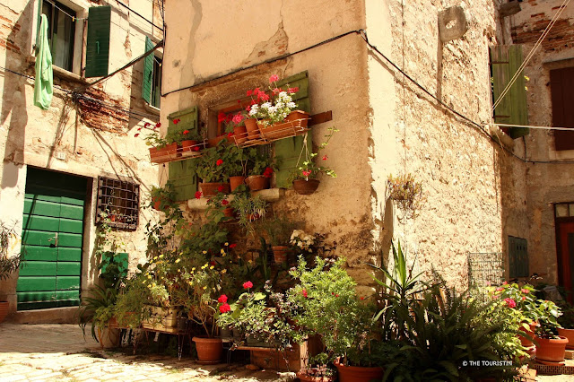 Rovinj, Croatia, Europe, old town. Washing line, flower pots, geraniums, green plants,cobbled streets.