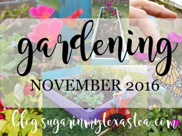 Gardening, November 2016