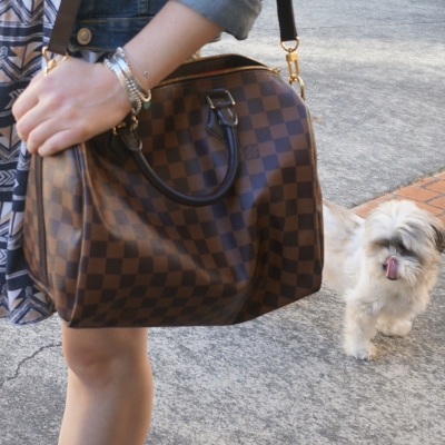 cheeky Cooper rescue Shih Tzu, Louis Vuitton Damier Ebene 30 speedy bandouliere | Away From The Blue