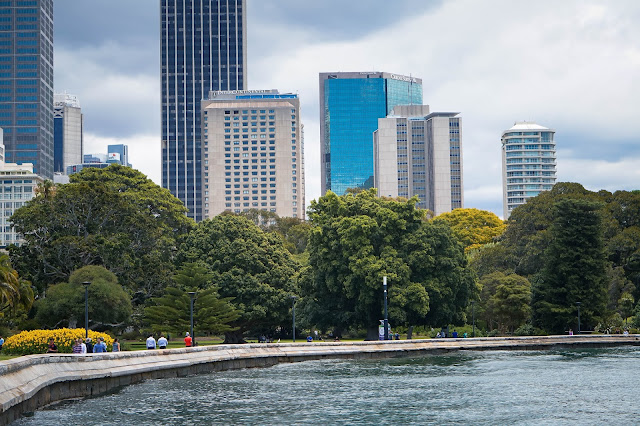 royal botanic gardens city view top 10 things to do in sydney travel guide diary