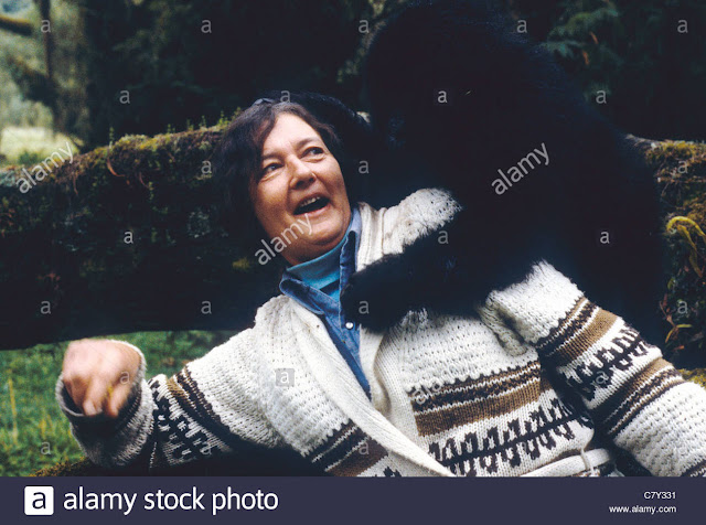 Dian Fossey was an American zoologist, primatologist, and anthropologist