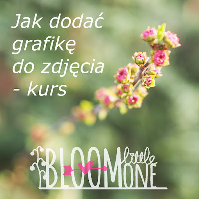 http://familyportraits.eu/2017/04/05/jak-dodac-grafike-do-zdjecia-kurs/