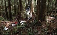 Kisah Mengerikan Hutan Aokigahara