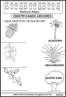 Árvores frutíferas e alfabetização