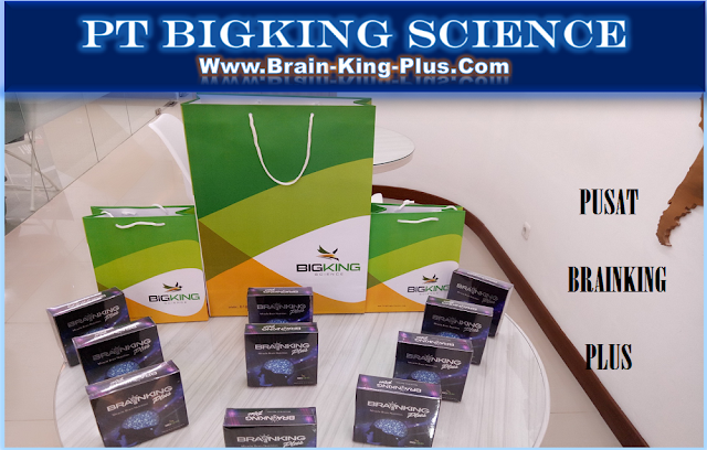 Brainking Plus, Pusat Brainking Plus, Manfaat Brainking Plus