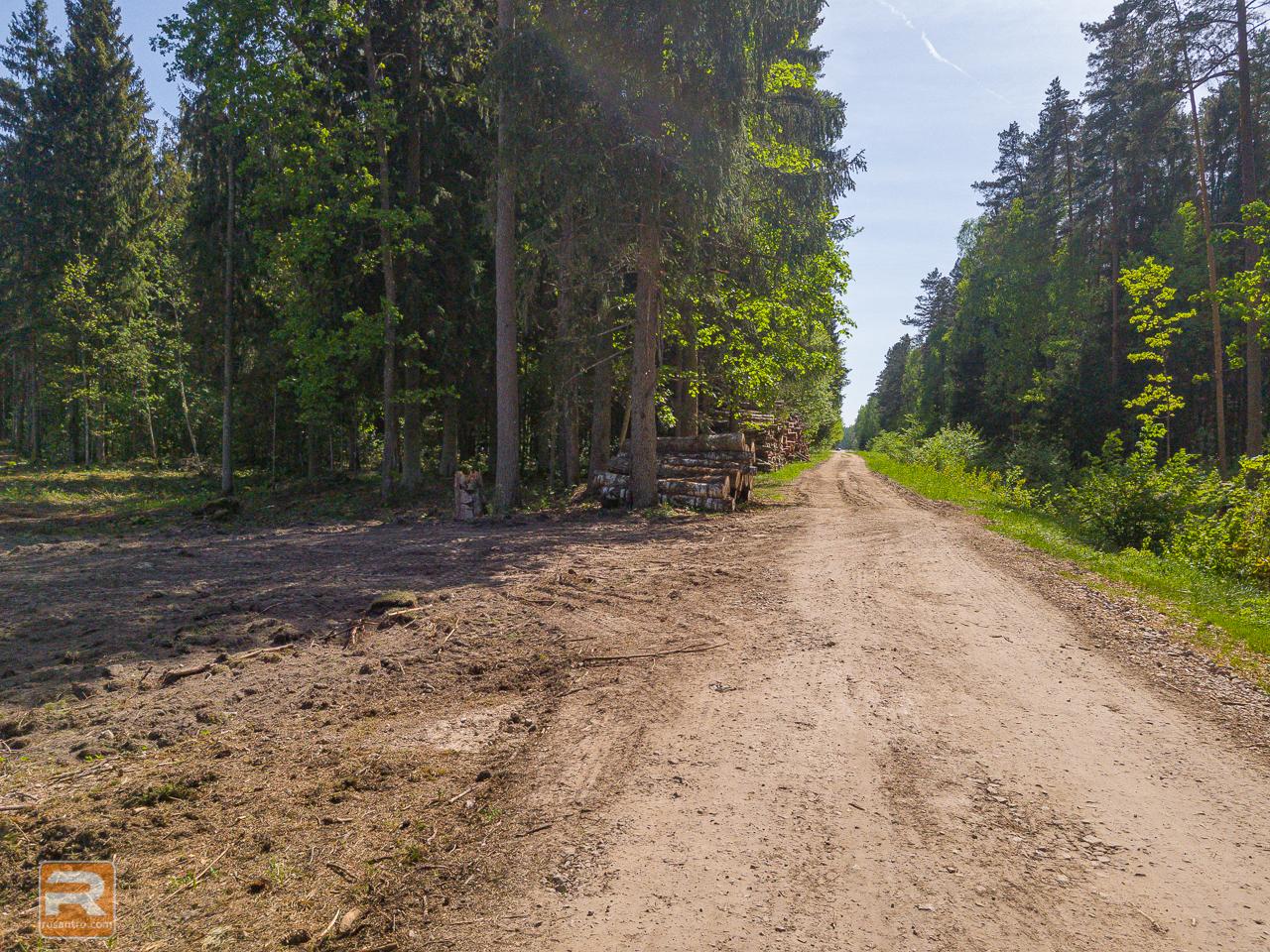 Izcirsts Ozolnieku mežs
