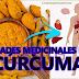 BONDADES MEDICINALES DE LA CÚRCUMA