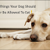 12 Things Your Dog Should Never Be Allowed To Eat