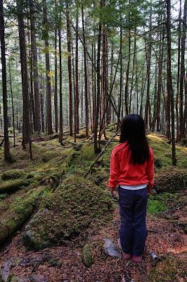 Kuskanax Falls Trail