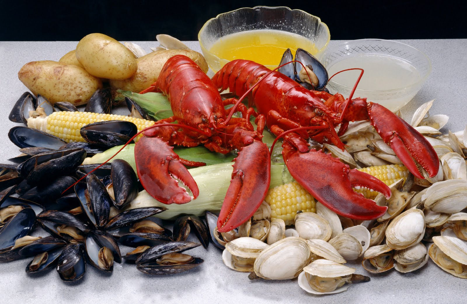 Gold Coast Cruises & Tours: Seafood Buffet now onboard