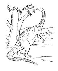 Dinosaur Coloring Pages For Print Images