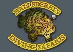 BALI SECRETS DIVING SAFARIS